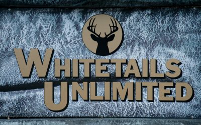Everything You Need to Know About Whitetails Unlimited