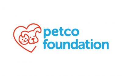 Petco Foundation: Everything You Need To Know